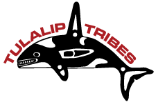 Tulalip Tribes Whale Logo